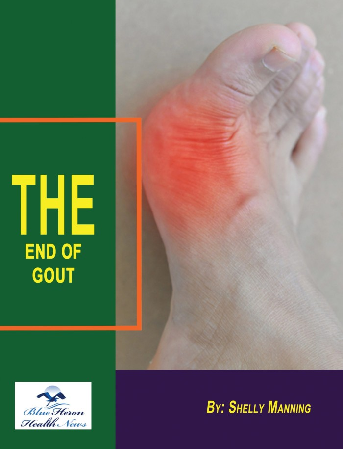 The-End-of-Gout-Cover-scaled_smaller-
