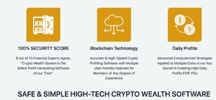 Crypto-Wealth-review