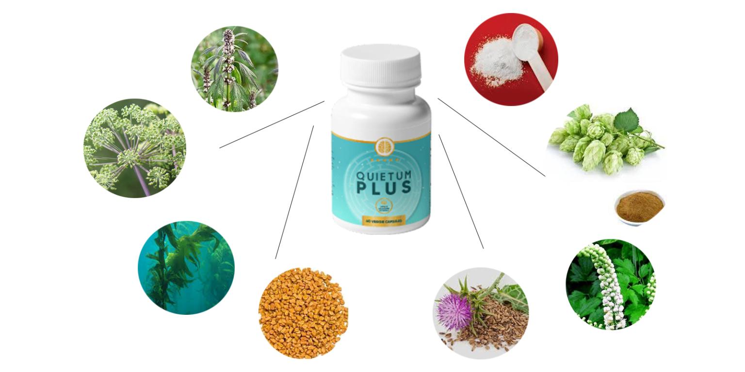 Quietum-Plus-ingredients-1536x768