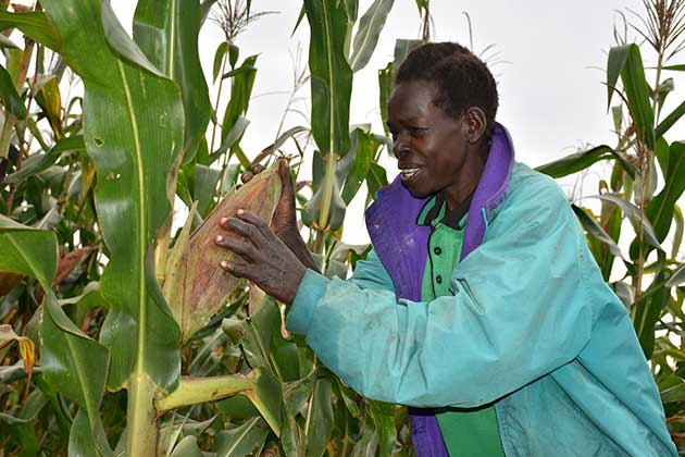 A-smallholder-woman-farmer_
