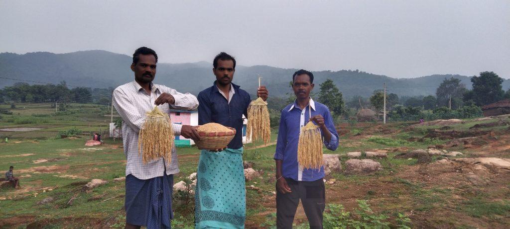 IM6_Farmers-with-Jeeraphool-variety_Credit-Deepak-Sharma-1024x461