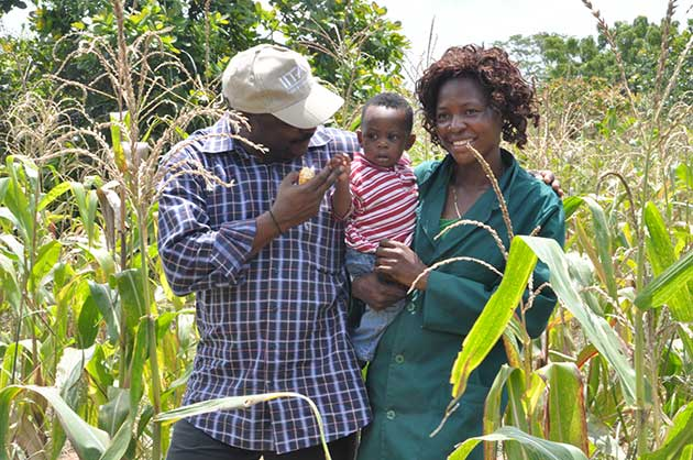 Nteranya-Sanginga-in-the-field
