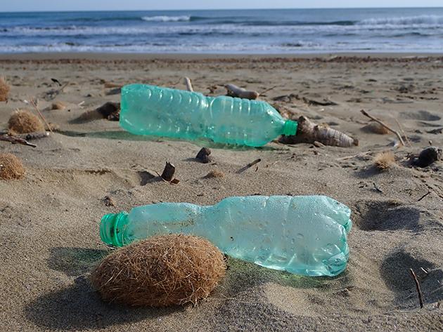 Single-use-bottles-_-Clean-Sea-LIFE_