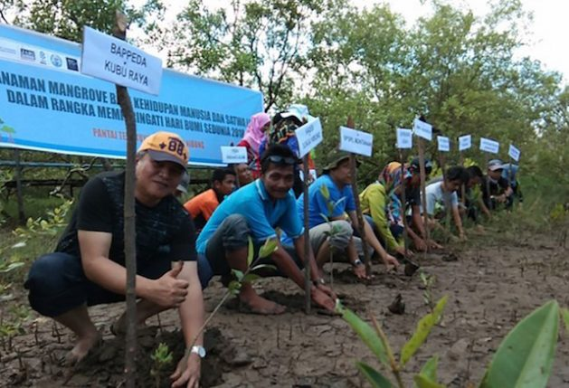 Sungai-Nibung-village-chief-Syarif-Ibrahim-second-from-left-leads-by-action-in-planting-mangrove-trees-in-Kubu-Raya-regency-West-Kalimantan-province.-1-629x429