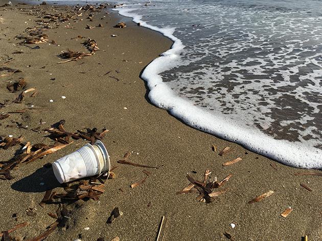 single-use-_-Clean-Sea-LIFE_