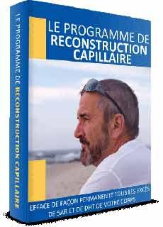 Le Programme De Reconstruction Capillaire Pdf