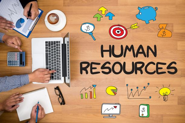 7 Best HR Tools Every Company Needs to Improve Their Workflow